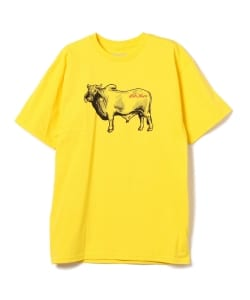 ANTI HERO / Cow Tee