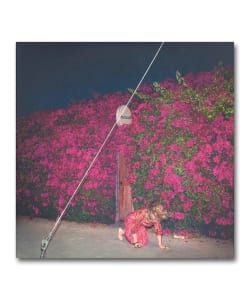 【LP】Feist / Pleasure <Polydor>