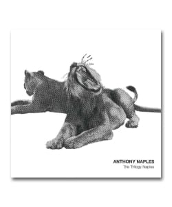 Anthony Naples / The Trilogy Naples <P-Vine>