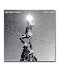 Mount Kimbie / Love What Survives 国内盤 <Warp Records>