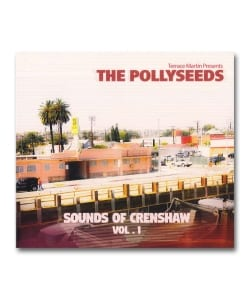 Terrace Martin Presents The Pollyseeds / Sounds Of Crenshaw Vol.1 <Agate / Inpartmaint>