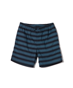 Pilgrim Surf+Supply / CHEYNE Printed Stripe Hang Short