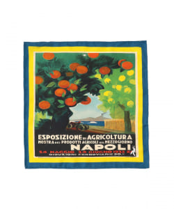 Spacca neapolis / AGRICOLTURA ポケットチーフ