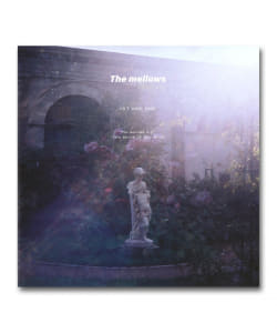 【LP】The Mellows / 1st & 2nd <Sailyard>
