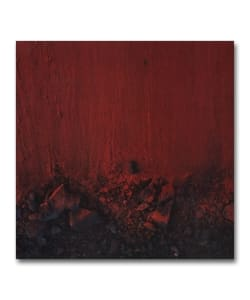 【EP】Moses Summney / Black In Deep Red, 2014 <Jagjaguwar>