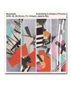 【LP】Bluestaeb / Everything Is Always A Process<Jakarta Records>