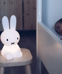 Mr. Maria / FIRST LIGHT miffy and friends