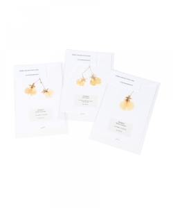 PLACER WORKSHOP / Dried Orchid Post Card Set